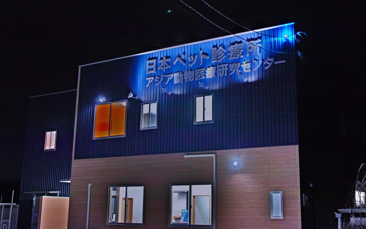 夜間救急の際は青いパトライトを点灯します